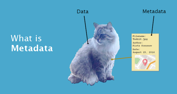 What Is Metadata 9 Examples