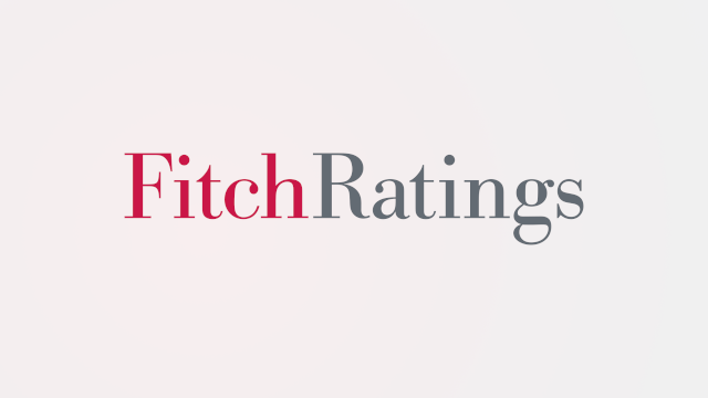Fitch Ratings Case Study