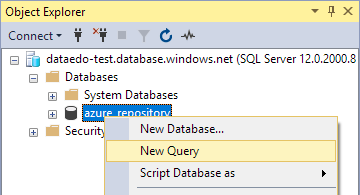 New SSMS query