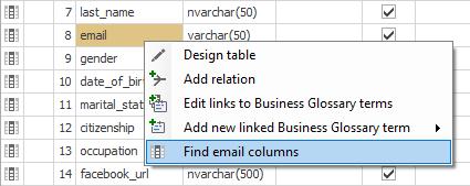 Manual Data Classification - Dataedo Documentation