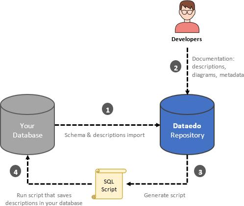 Writing descriptions back to the database - Dataedo Documentation