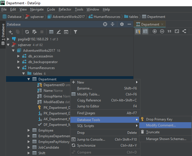 How to view and edit table and column comments with