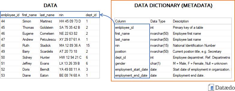 What is Data Dictionary - Dataedo Data terminology