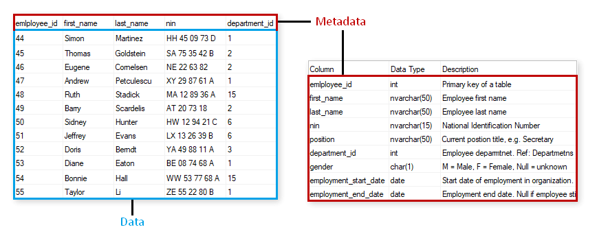 What is Metadata (with examples) - Dataedo Data terminology